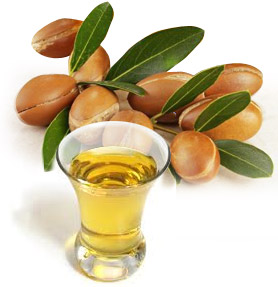 Argan_Tree